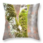 Tree Moss Abstract Throw Pillow