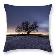 Tree Of Insanity Throw Pillow