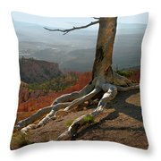 Tree On A Ridge In Bryce Canyon  Throw Pillow