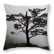 Tree On The Blue Ridge Parkway Throw Pillow