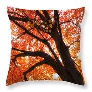 Tree Orange Blast Throw Pillow