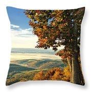 Tree Overlook Vista Landscape Throw Pillow