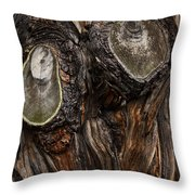 Tree Owl Throw Pillow