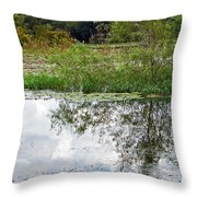 Tree Reflecting In Pond Throw Pillow