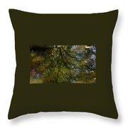 Tree Reflection Throw Pillow