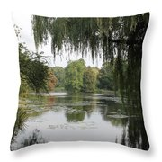 Tree Reflection In Autumn Throw Pillow
