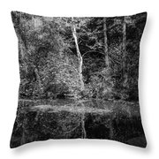 Tree Reflection In Chesapeake And Ohio Canal Throw Pillow