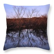 tree reflection on Wv pond Throw Pillow