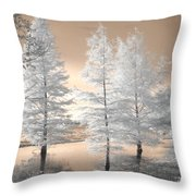 Tree Reflections Throw Pillow by Jane Linders