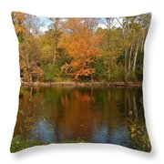 Tree Reflects Into The River Throw Pillow