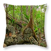 Tree Roots On Rock Throw Pillow
