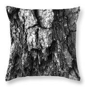 Tree Rot Throw Pillow