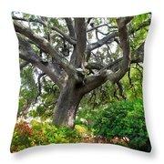 Tree Series 48 Throw Pillow