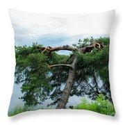 Tree Struck By Lightning Throw Pillow