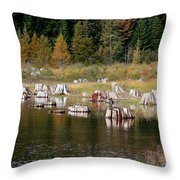 Tree Stumps At Clear Lake Throw Pillow