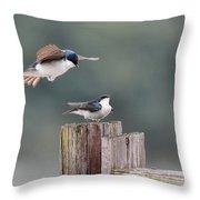 Tree Swallows Mating 1 Throw Pillow
