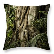 Tree Trunk And Ferns Throw Pillow