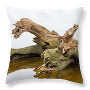 Tree Trunk In Water Throw Pillow