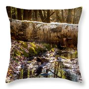 Tree Walk Throw Pillow