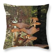 Tree With A Fungus Throw Pillow