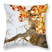 Tree With Half Of The Leaves Missing Throw Pillow