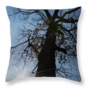 Tree With Sun Throw Pillow