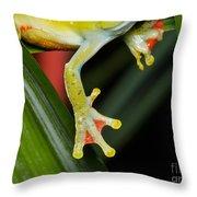 Treefrog Foot Throw Pillow