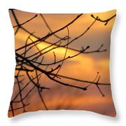 Trees Ablaze In Autumn Throw Pillow
