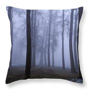 Trees Along Greenlake In Fog Throw Pillow