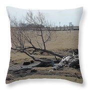 Trees And Early Spring Creek Throw Pillow