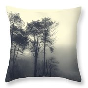 Trees And Fog At Castle Hill Throw Pillow