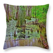 Trees And Knees In Tupelo/cypress Swamp At Mile 122 Of Natchez Trace Parkway-mississippi Throw Pillow