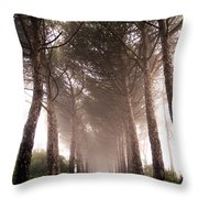 Trees And Mist Throw Pillow