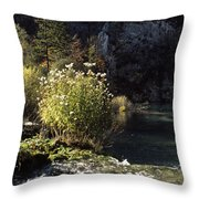Trees And Plants At The Lakeside Throw Pillow