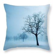Trees And Snow In Fog, Toronto, Ontario Throw Pillow