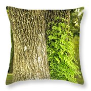 Trees At My Window Throw Pillow