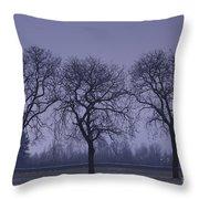 Trees At Night Throw Pillow