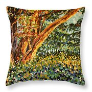 Trees At Sunset In Lafayette Park Throw Pillow