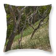 Trees At The Edge Of A Dune At Silver Lake Throw Pillow