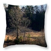 Trees By The Wayside Throw Pillow