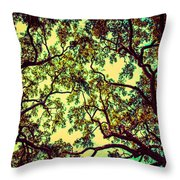 Trees Closing In Throw Pillow
