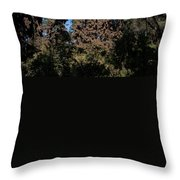 Trees Covered With Monarch Butterflies Throw Pillow