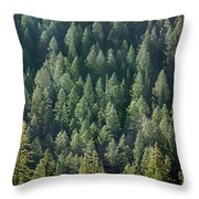 1a9502-trees Lit Up, Wy Throw Pillow