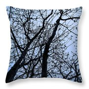 Trees From Below Throw Pillow