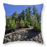 Trees Growing On The Edge Throw Pillow