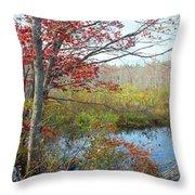 Trees In A Forest, Damariscotta Throw Pillow