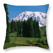 Trees In A Forest, Mt Rainier National Throw Pillow