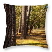 Trees In A Park Throw Pillow