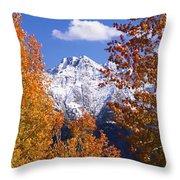 Trees In Autumn, Colorado, Usa Throw Pillow