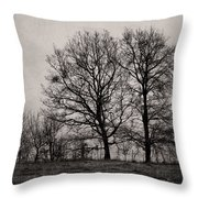 Trees In November Throw Pillow